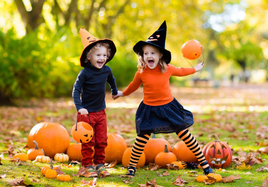 Magical Halloween Woodland Weekend. Book online!