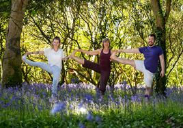 AUGUST Early Morning YOGA at Mount Congreve. Booked Out!